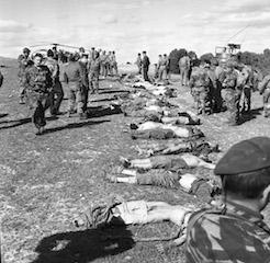 guerre-algeria