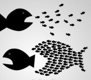 La nuova bolla: demistificare i numeri, combattere il Jobs Act, costruire il sindacalismo sociale